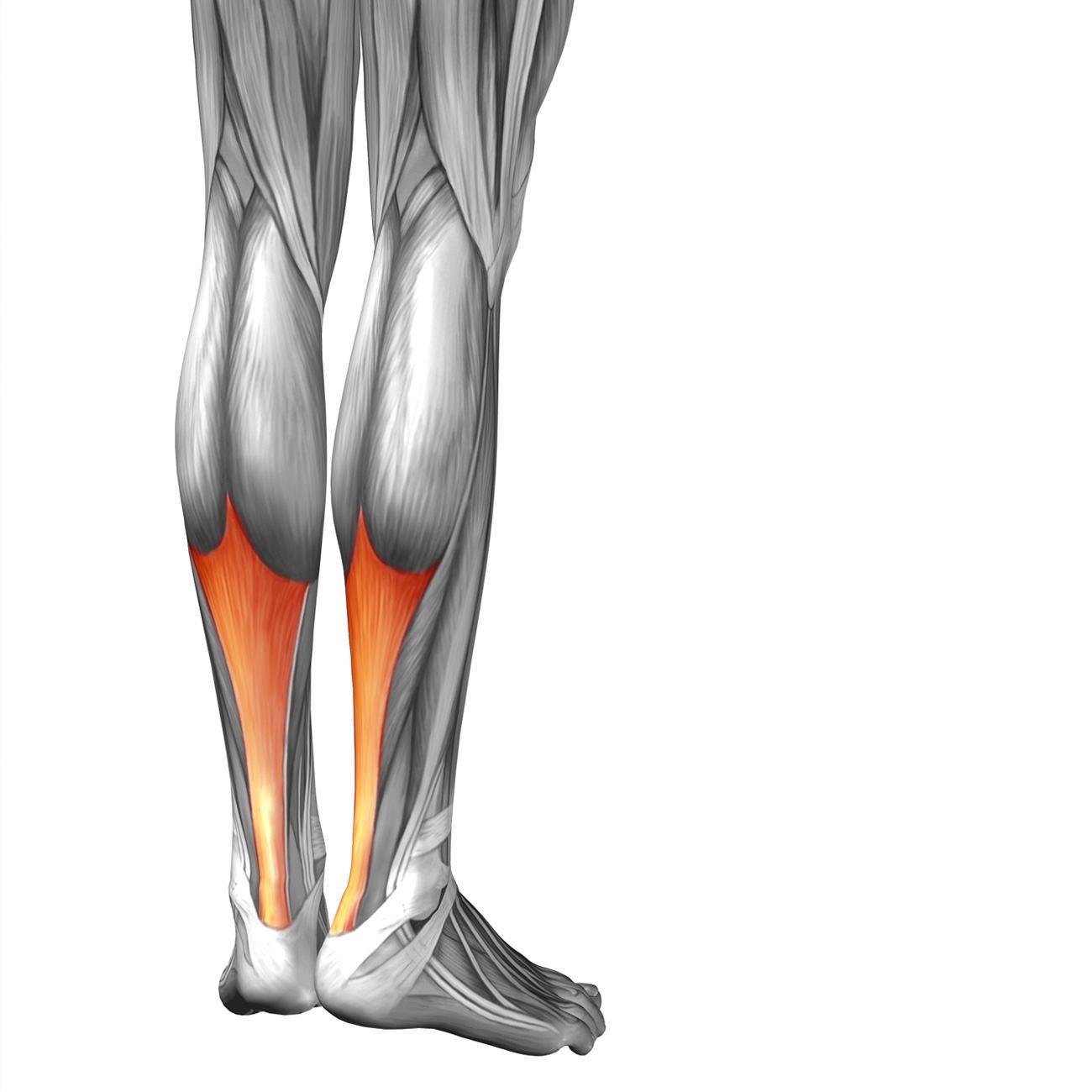 achilles tendonitis Barangaroo